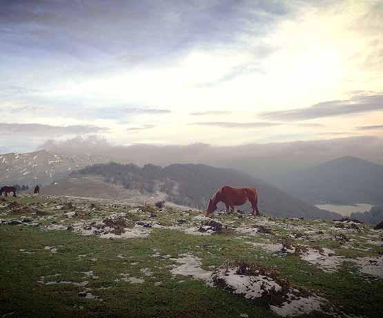 carte camping pays basque